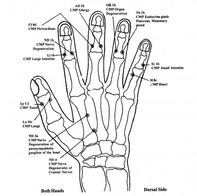 Electro Acupuncture According To Voll Figures : Acupressure